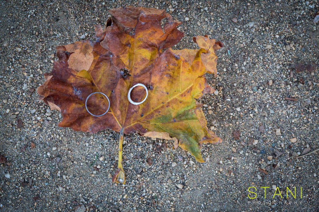 wedding rings on a fall leave